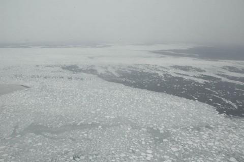 海氷観測 海上自衛隊八戸航空基地 P-3C No4