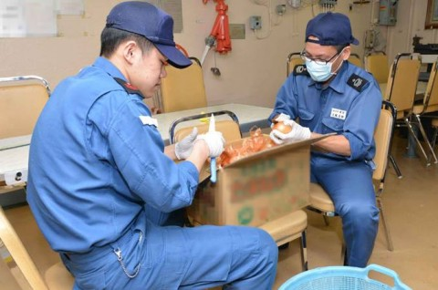 平成27年度外洋練習航海2【海上自衛隊一般幹部候補生課程(部内)】8