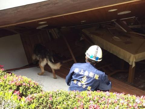 熊本県で発生した地震への災害派遣(警備犬)1