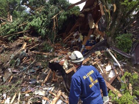 熊本県で発生した地震への災害派遣(警備犬)2