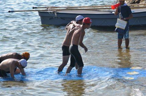 海上自衛隊 幹部候補生 約300名が江田島湾を力泳【遠泳訓練】No6
