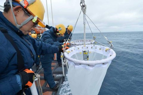 砕氷艦しらせ:第58次南極地域観測協力 初めて見る氷山