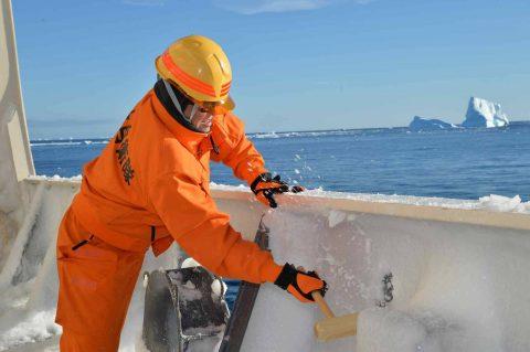 第58次南極観測隊の協力(南極観測船しらせ)の様子 オーロラetc